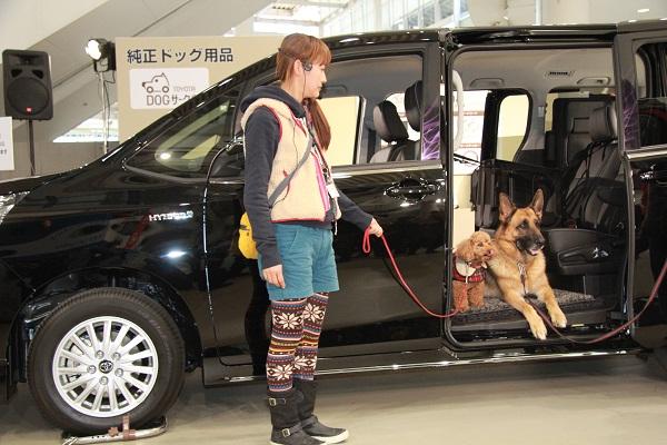 発表当日は、「トヨタドッグサークル」ブランドのデモンストレーションも開催。なお両車には、ペットの毛が絡まりにくく臭いを抑えるペットシートカバーや、シートベルトで固定ができる車内用ペットキャリーのオプション設定がある