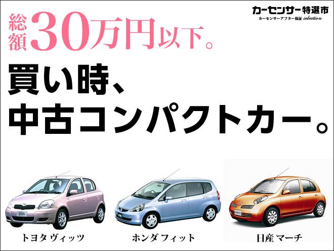 Kiji fair 93639