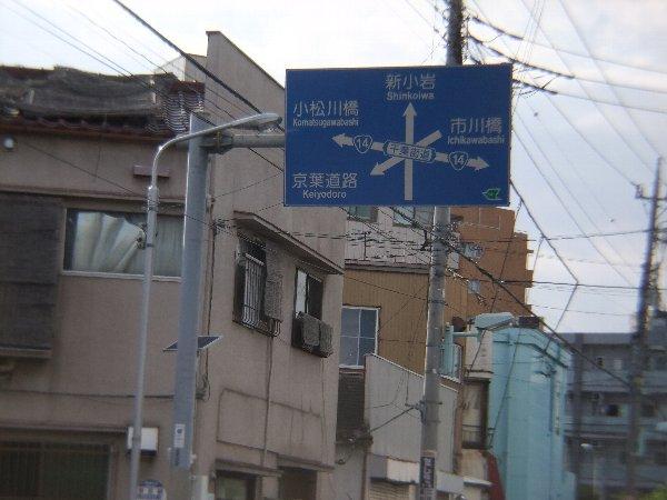 なにがなにやら……日本で一番道が...