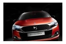 NEW DS 4 CROSSBACK(欧州仕様車)