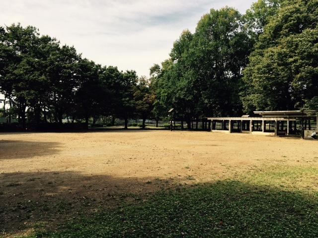 ▲筆者が少年時代、草野球などをやっていた善福寺川緑地公園。ほとんどの場所は様変わりしていたが、写真の一角は30年前とほぼ変わらないまま。様々な記憶が蘇り、思わず涙した筆者だった