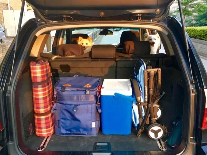 ▲一方、こちらはグランピングのときの荷室。後方視界が広々&スッキリして、ぐりとぐらもニッコリ