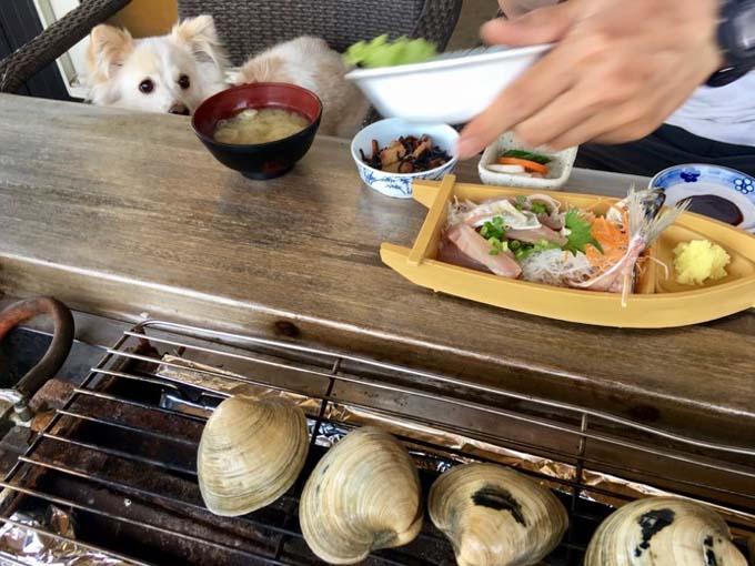 ▲焼きたてのはまぐり、しかも自分で焼いて食べるはまぐりの味はまた格別!