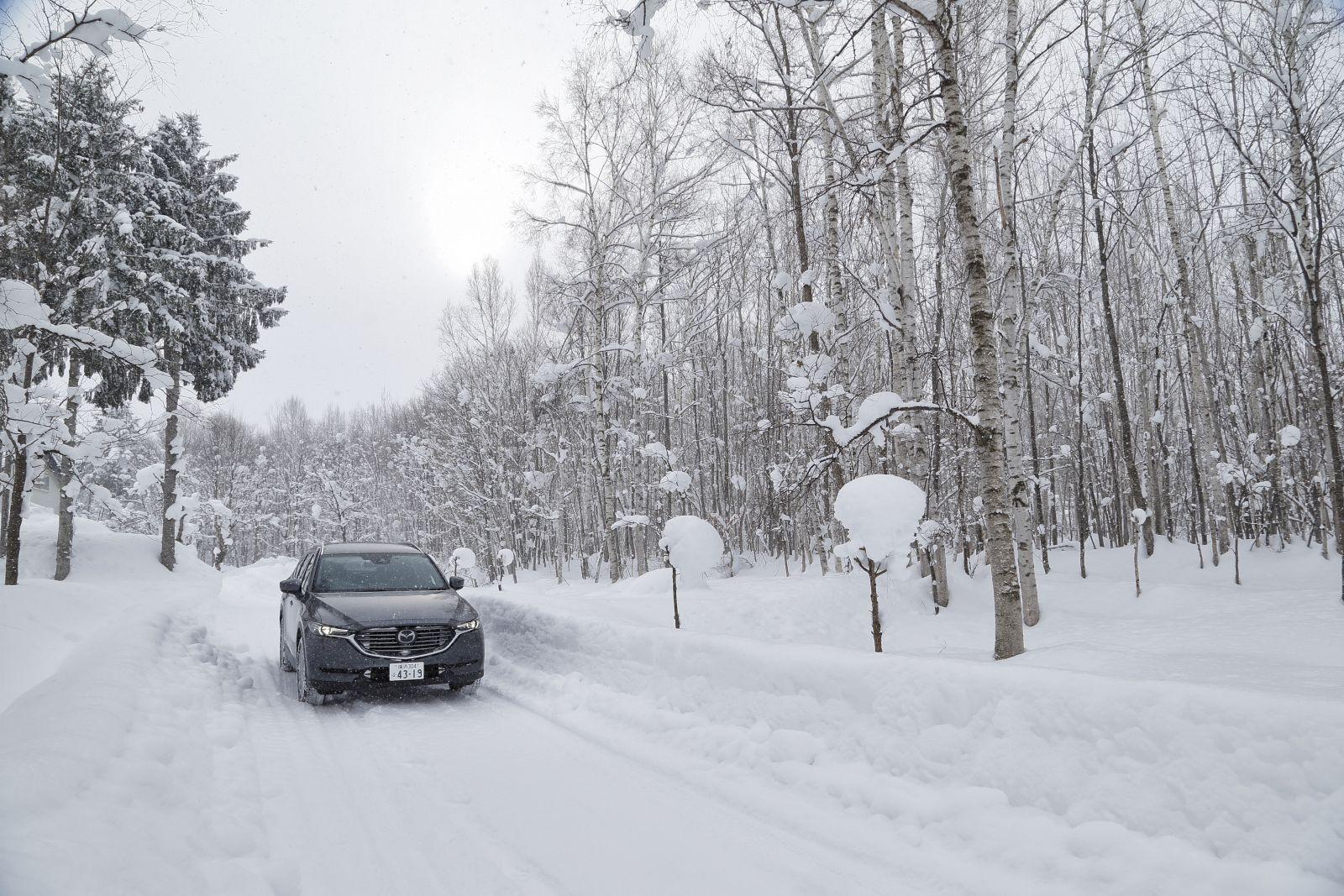 ▲走ったコースは、雪が絶えず降っているためにソフトな圧雪路だったのでスタッドレスタイヤも性能を発揮しやすい