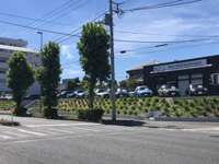 MINI NEXT 横浜港南
