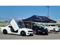 ALESS International